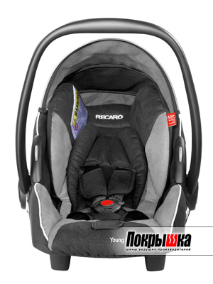 RECARO Young Profi Plus (Graphite)