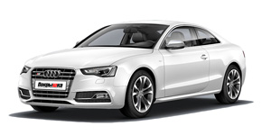 диски  AUDI  s5_restyle_coupe