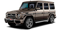 диски MERCEDES-BENZ G (463) Restyle 3