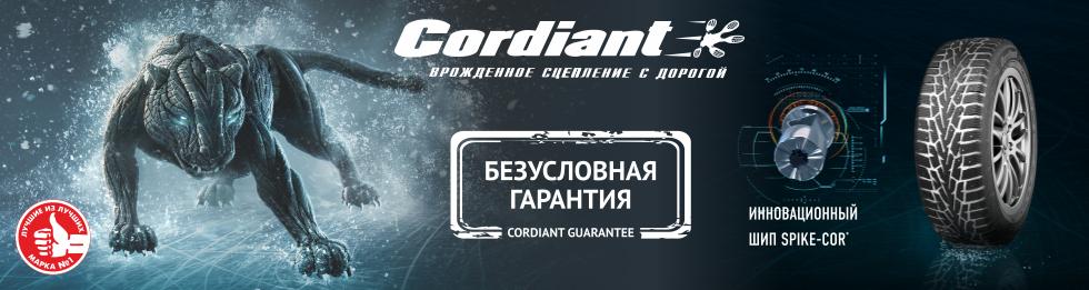 зимняя резина кордиант